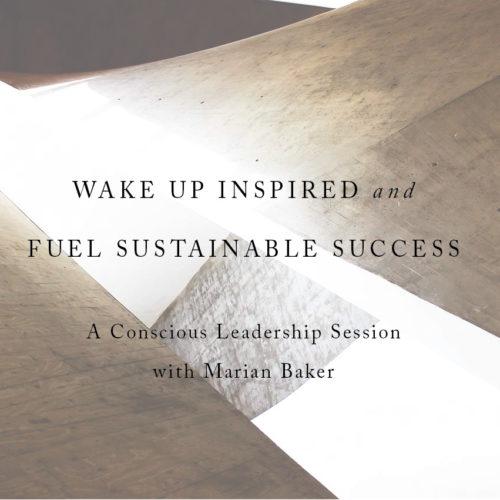 Business Coaching for Social Entrepreneurs, Social Enterprises, Conscious Leaders who want to make a social impact