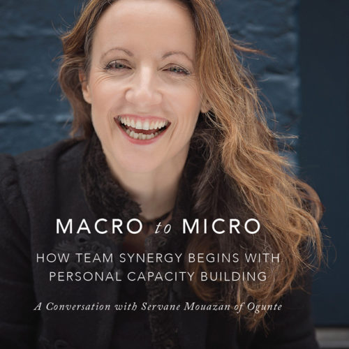 Macro to Micro: How Team Synergy Begins With Personal Capacity Building with Servane Mouazan of Ogunte for Social Entrepreneurs